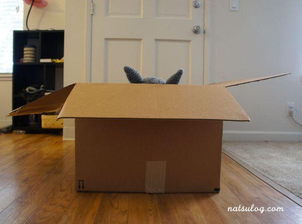 A big box 6