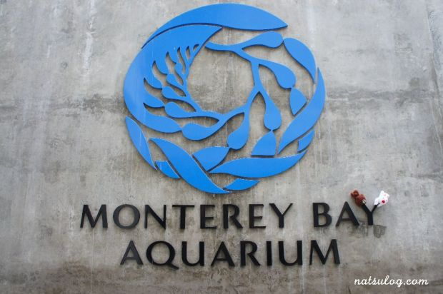 Great aquarium