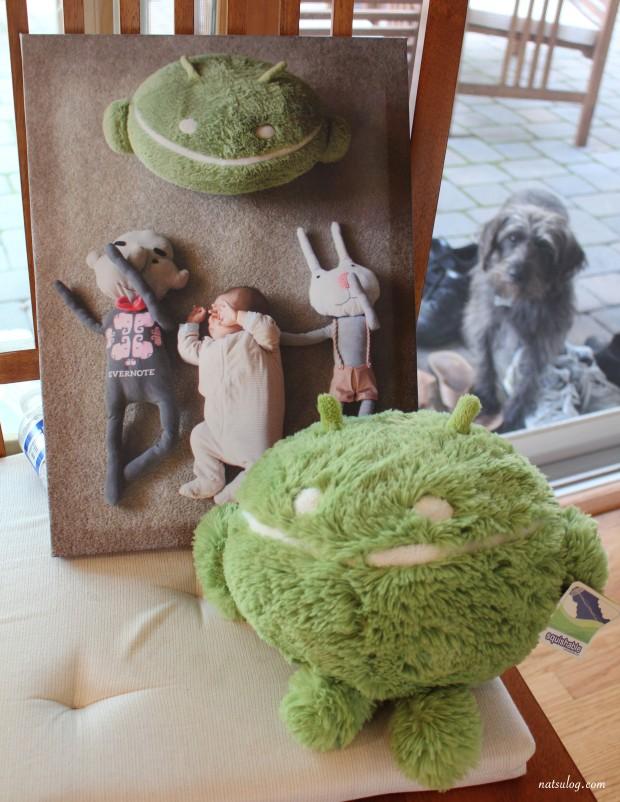 koa's gift (photo panel)